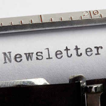 social media, SEO and content marketing newsletter